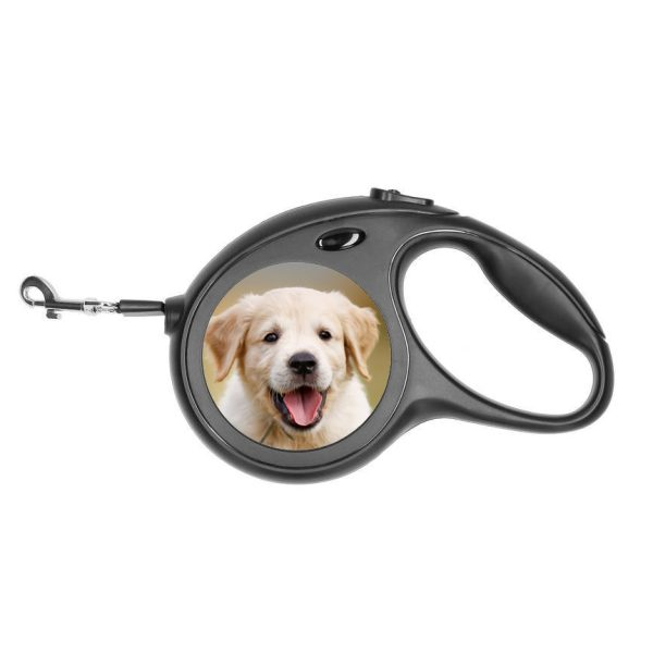 Leiband hond