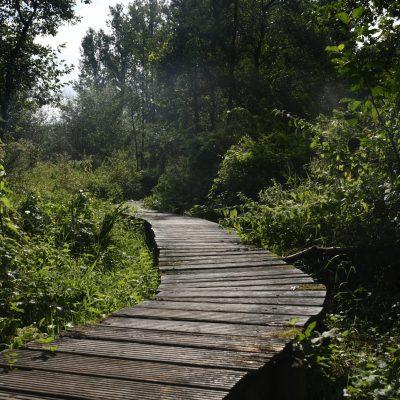 Vlonderpad Welle en Kapellemeersen wandelroute Denderleeuw