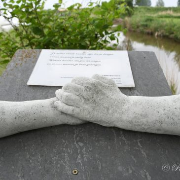 Heidemeerstocht Puur Natuur Berlare