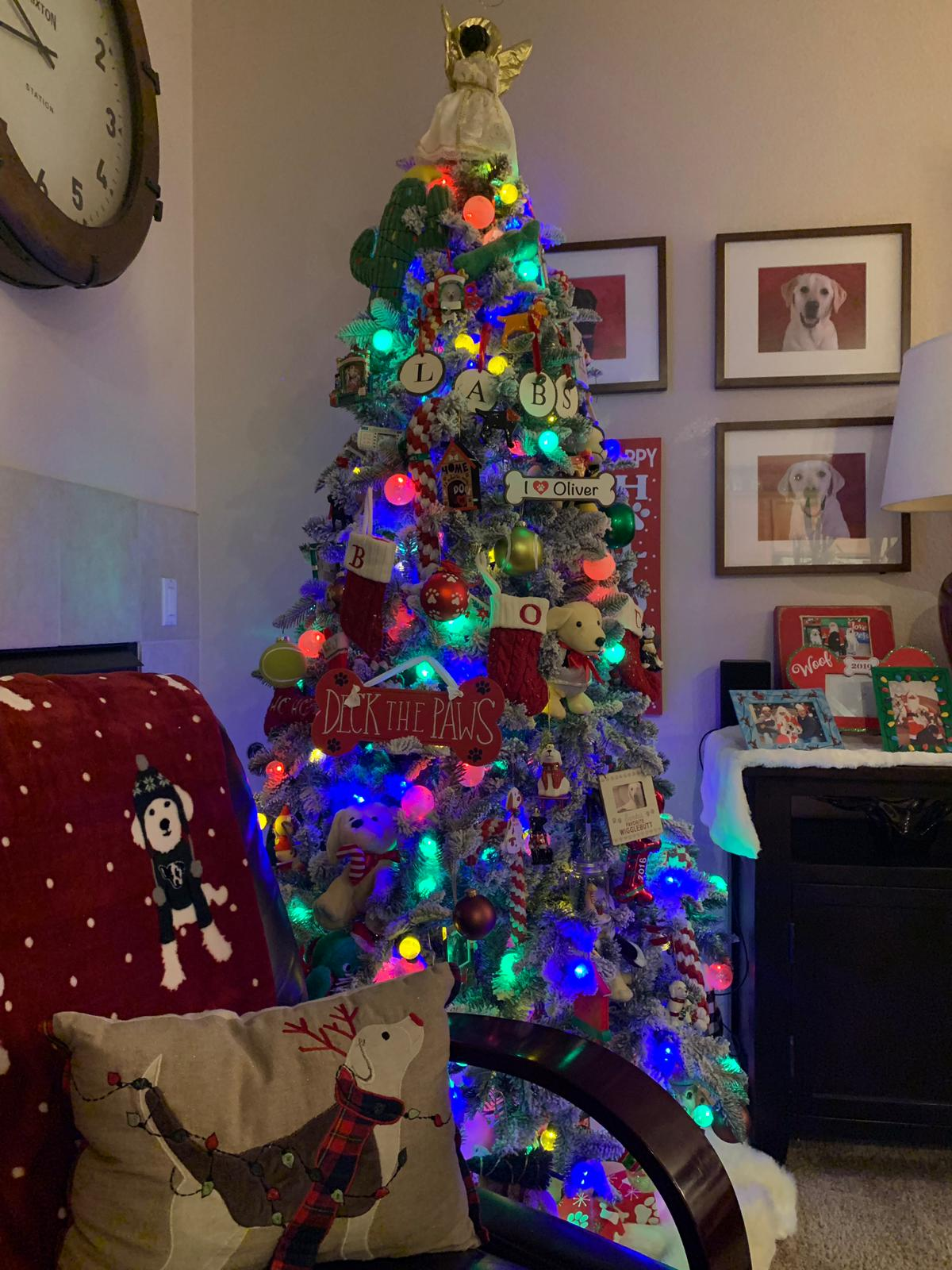 Christmas tree with many, many coloured bulbs, and dog puns like deck the paws and other dog related decorations on.