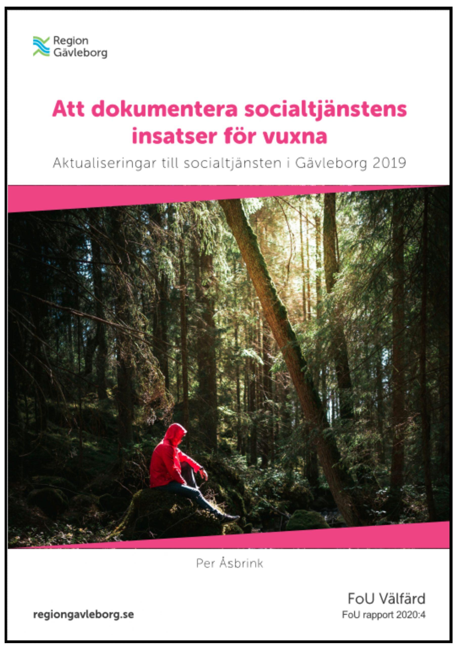 Att dokumentera socialtjänstens insatser för vuxna