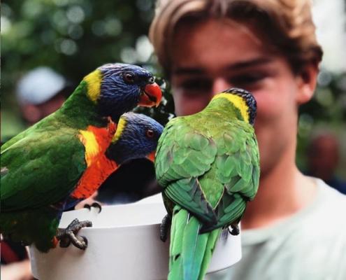 Marius, Australia_utveksling