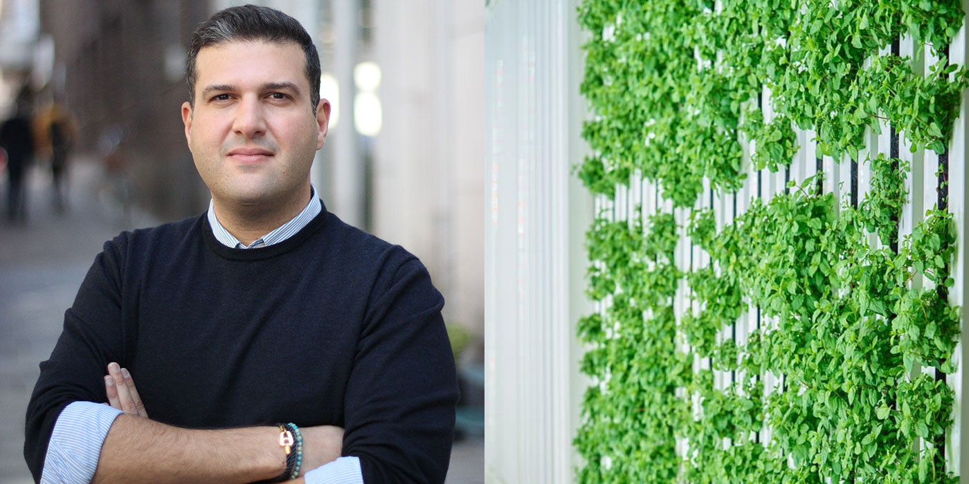 Swegreen, Sepehr Mousavi
