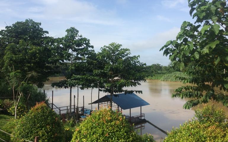 Wildlife spotten op Maleisisch Borneo