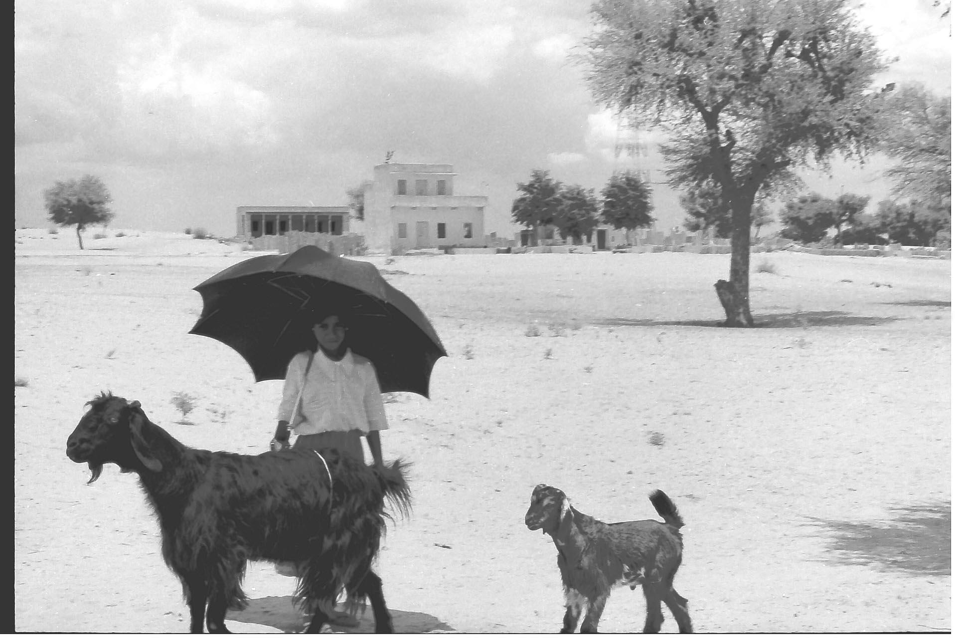 Mandawa-India 1990