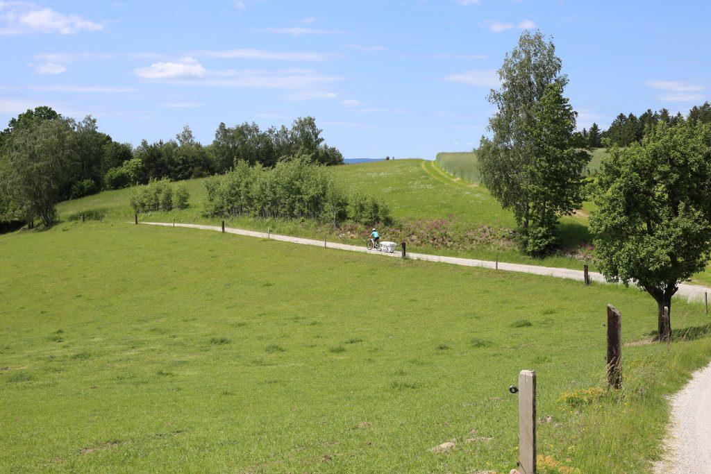 Weg zur tschechischen Grenze, grüne Wiese