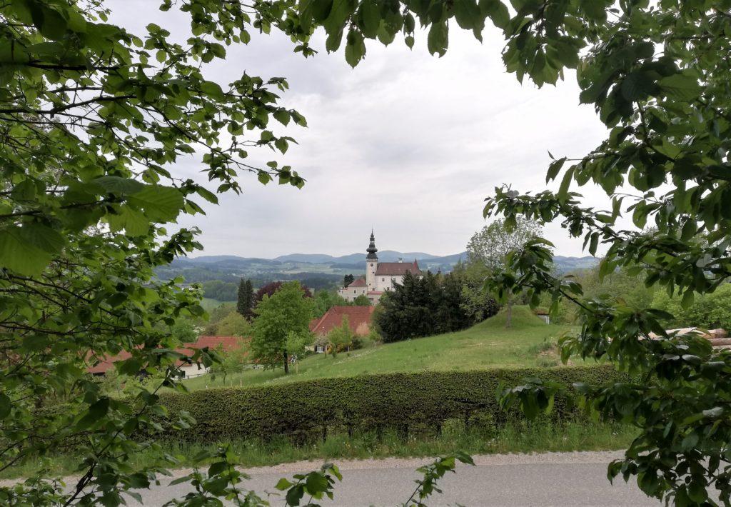 Schloss Weinberg mit Blättern rundum