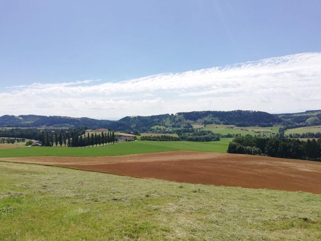 braunes Feld Meitschenhof