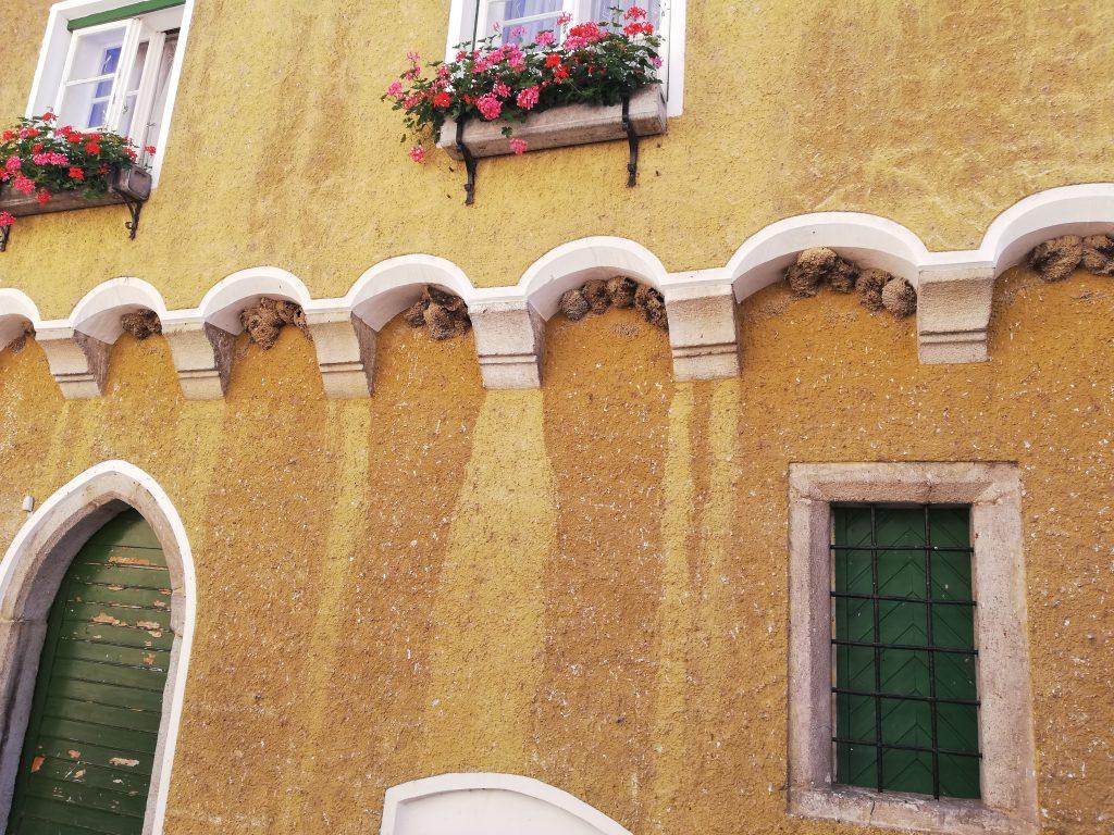 gelbes Haus mit Schwalben