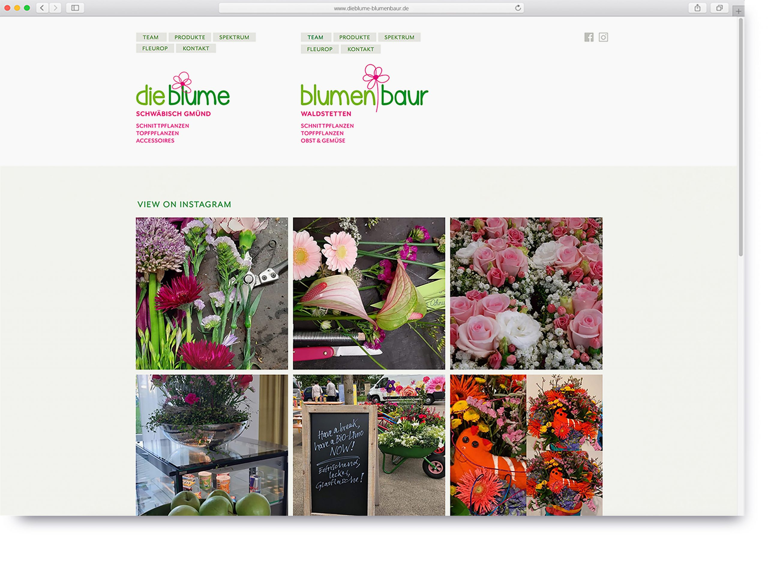 dieblume-blumenbaur-website-1-scaled.jpg
