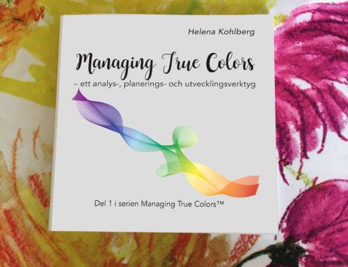 Lansering – Managing True Colors – ett analays-, planerings- och utvecklingsverktyg 2