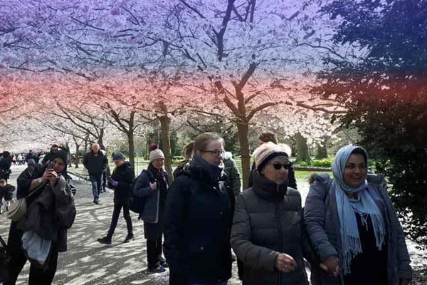 walk and talk aktiviteter friends & family
