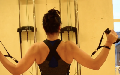 Shoulder part V – Lower Trapezius + external rotators
