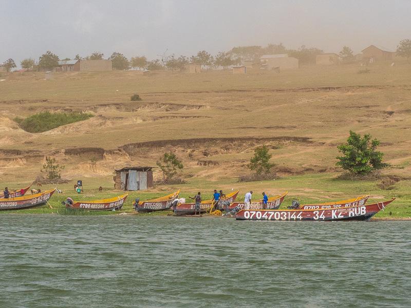 Båtby. Fröstad Naturfoto. Uganda.
