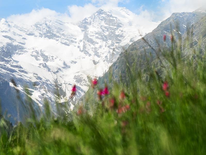 Berg_Norra Italien