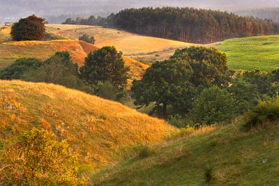 Österlen - där vacker natur möter rik kultur.