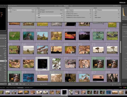 Jag använde Adobe Bridge men är tillbaka i Lightroom Classic CC igen.