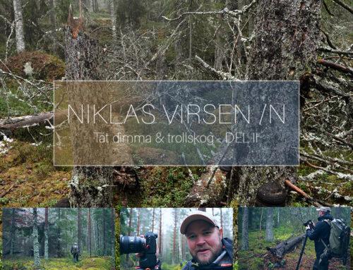Tät dimma & Trollskog – Del II