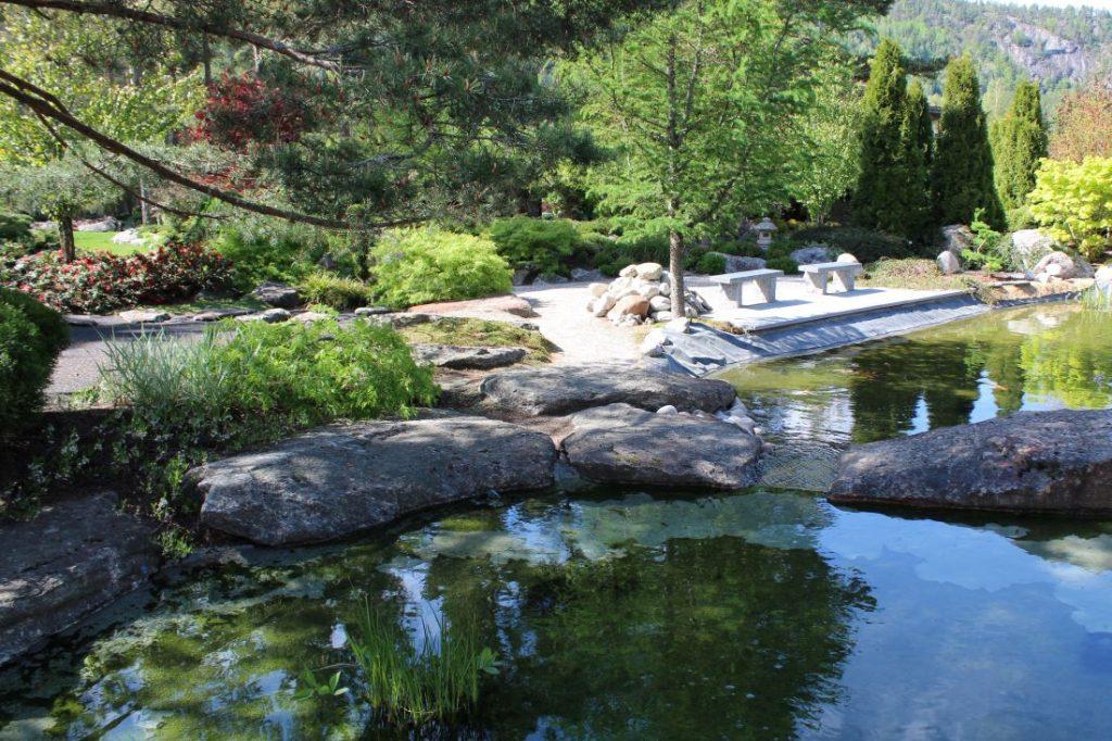 Karpedammen i den Japanske Hagen i Odden Hage