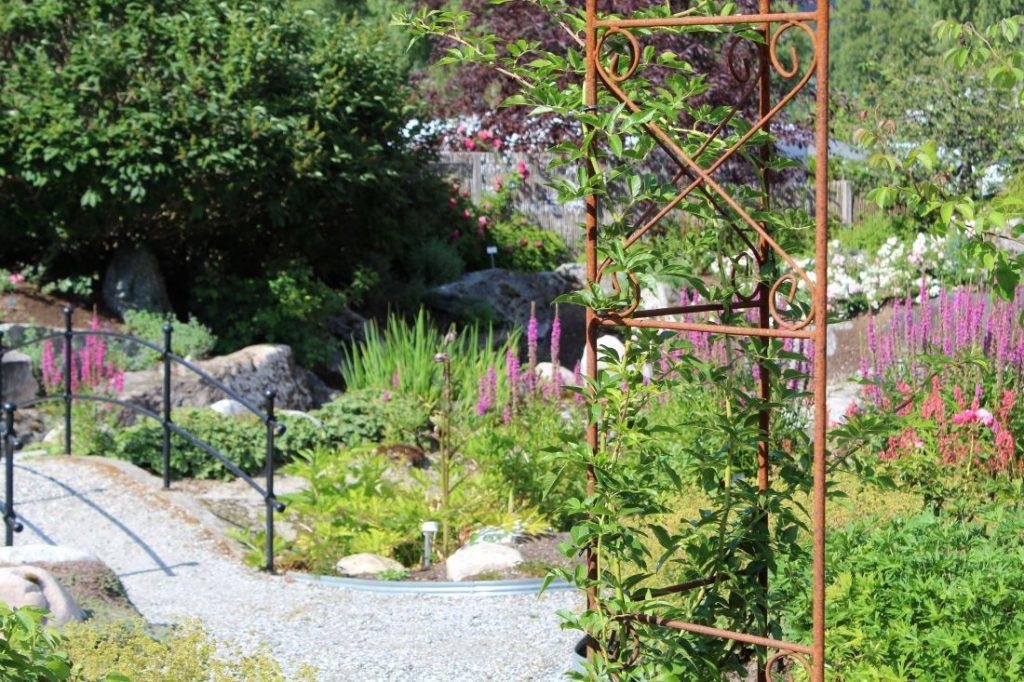 Rose- og staudehagen i Odden Hage