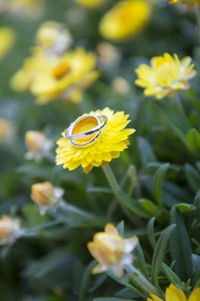 Gli-anelli-degli-sposi