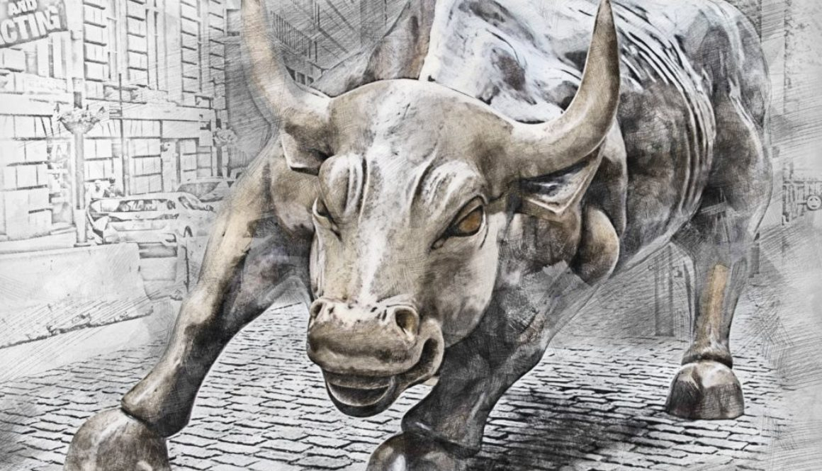 we-empower-investors-bull-2200