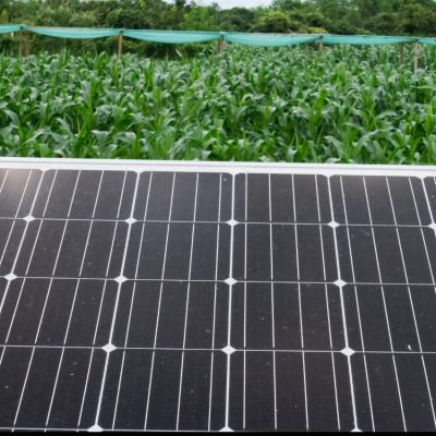 Agrovoltaico: i vantaggi del fotovoltaico in agricoltura