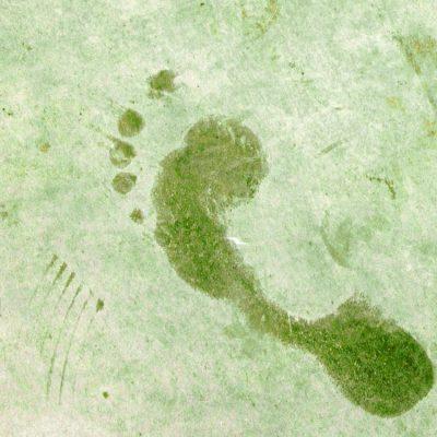 Impronta ecologica: come si calcola e come ridurla