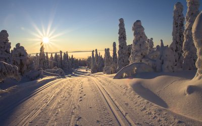 adventure-cold-cross-country-skiing-416728