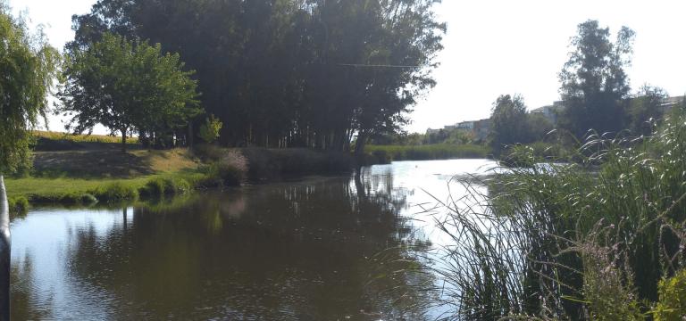 Se desarrolla un programa de voluntariado ambiental para más de 100 personas en las zonas protegidas del río Guadiana y ríos afluentes de las cercanías de Mérida