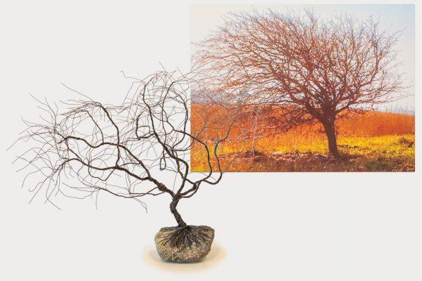 Består af to dele: Nr. 3804 - Træet i vinden - 40x30cm - foto på aluminium - kr. 700,- Nr. 3805 - Vindtræet - jerntråd - 50cm - kr. 1.500,- Begge dele kr. 2.000,-