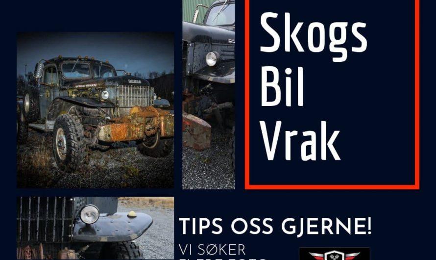 Søker flere skogsvrak for fotoshoot i Trøndelag