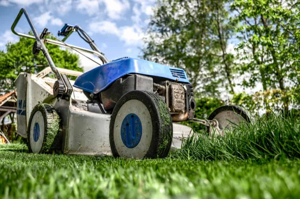 How To Increase the Kerb Appeal of your Property Through Garden Maintenance 1