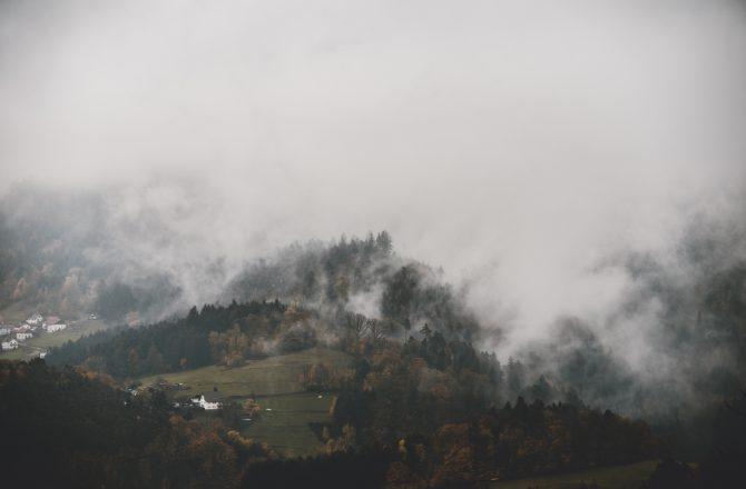 Kulturgut:Bauerngarten – Definition