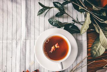 Die 10 besten Teesorten aus dem eigenen Garten – Der Geschmack des Sommers