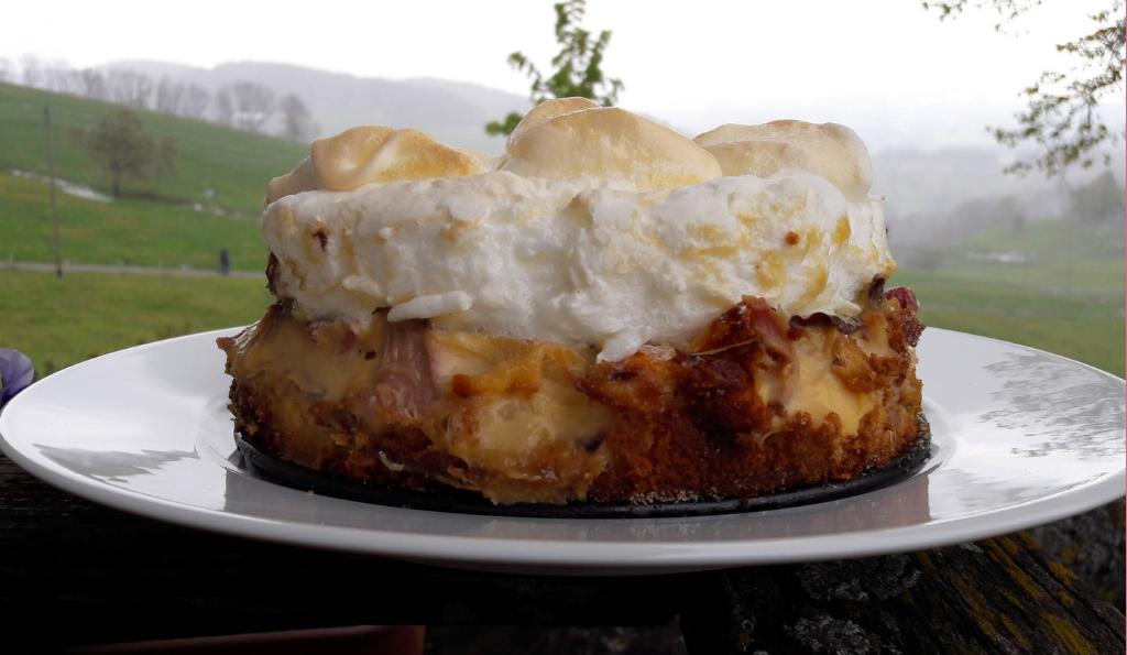 Mein Rhabarber-Schicht-Kuchen mit Vanillepudding