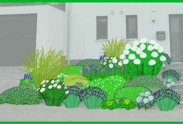 Vorgarten-Gestaltung: Ein Insektenmagnet in Weiß & Blau