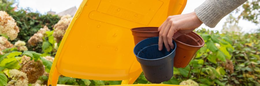 Blumentöpfe gehören in die gelbe Tonne