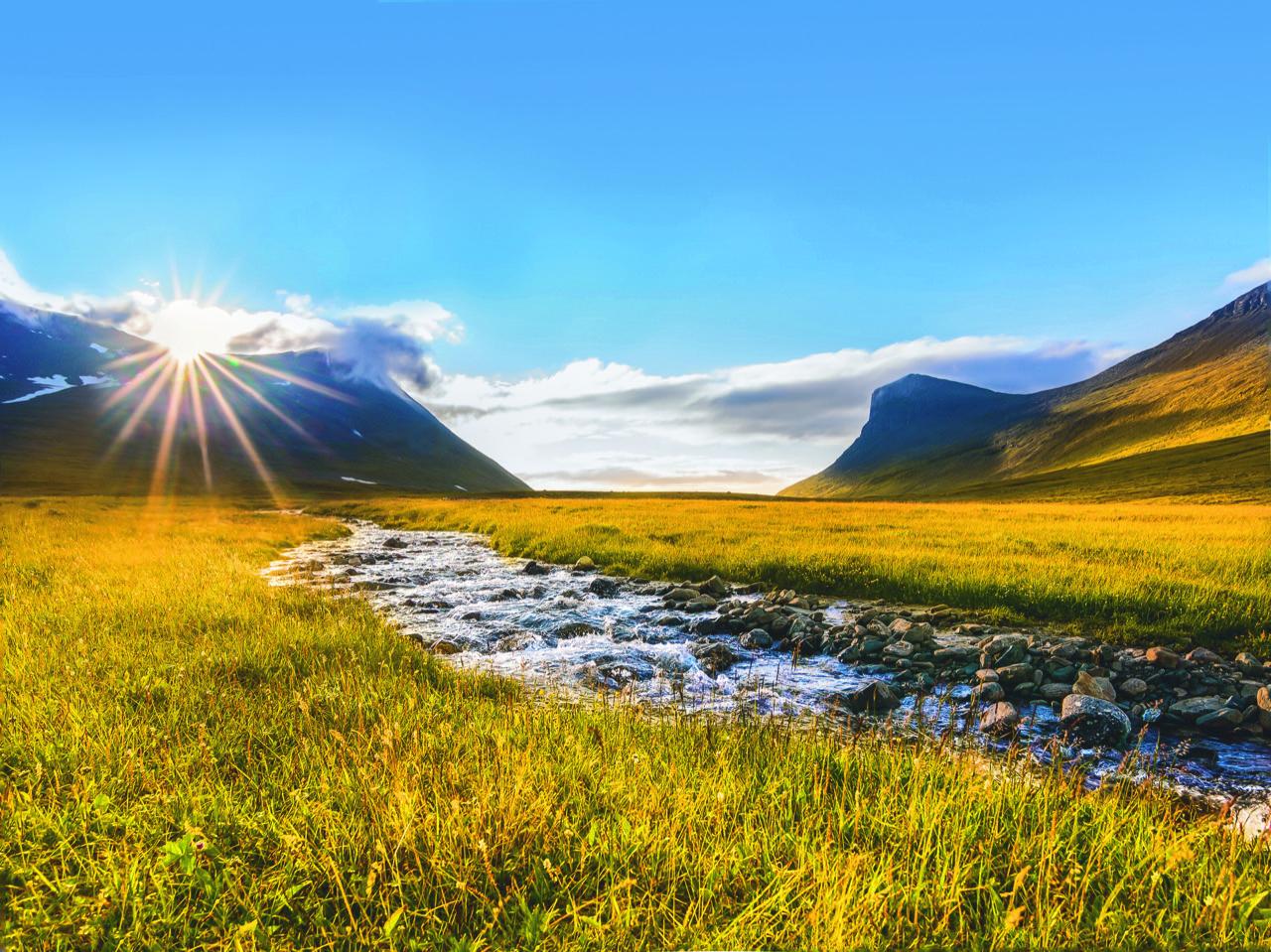 Nordic & Natural
