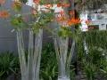 Venlo-20120513-00233