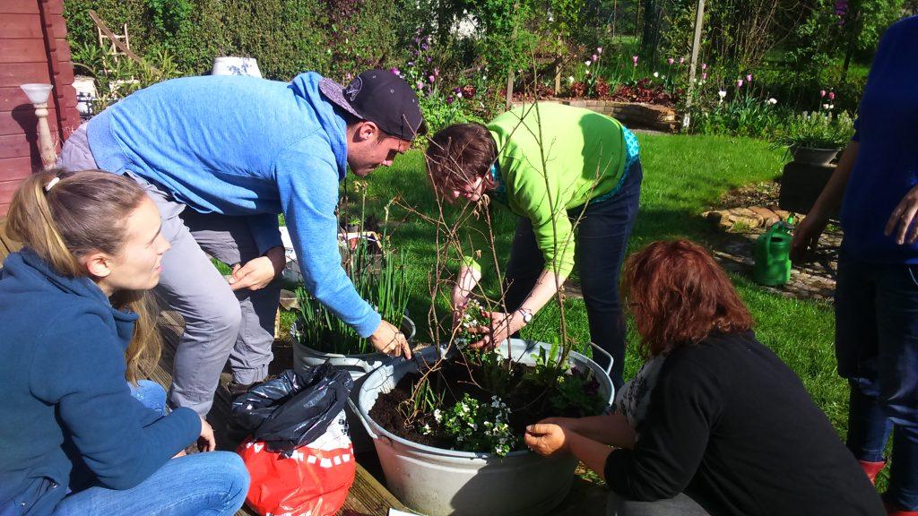 Gartenkurs Urban Gardening Gärtnern auf kleinem Raum