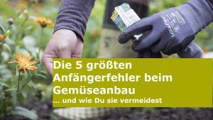 Read more about the article Die 5 größten Anfängerfehler im Gemüsegarten
