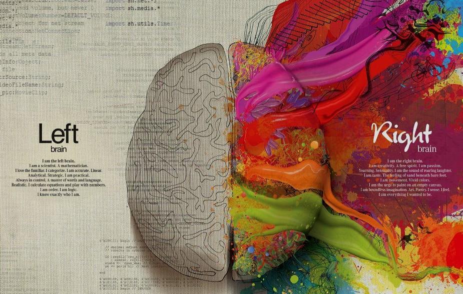 """La divisione del """"pensiero"""" tra i due emisferi del cervello"""