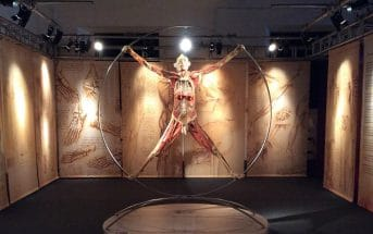 Mostra Real Bodies Milano