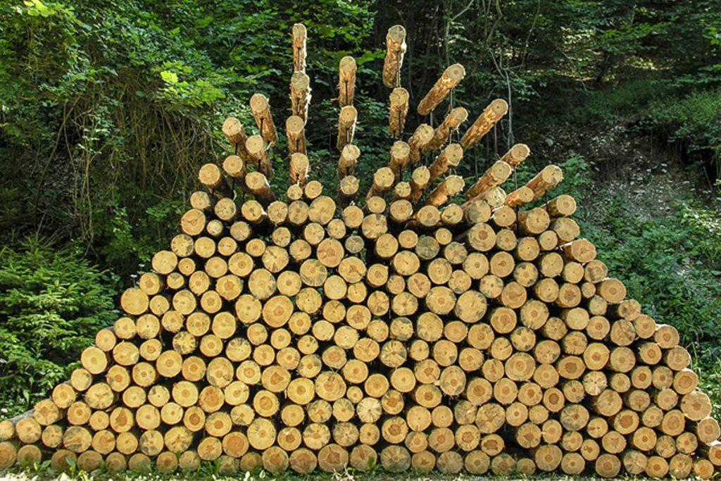 piled-forest-2006-02-cornelia-konrads
