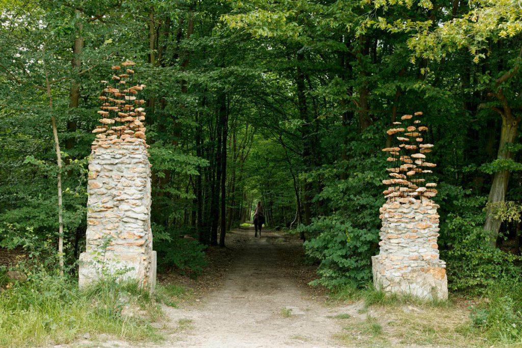 the-gate-2004-01-cornelia-konrads