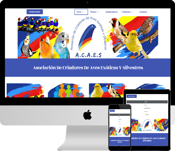 Acaes Club GlobalNetSide