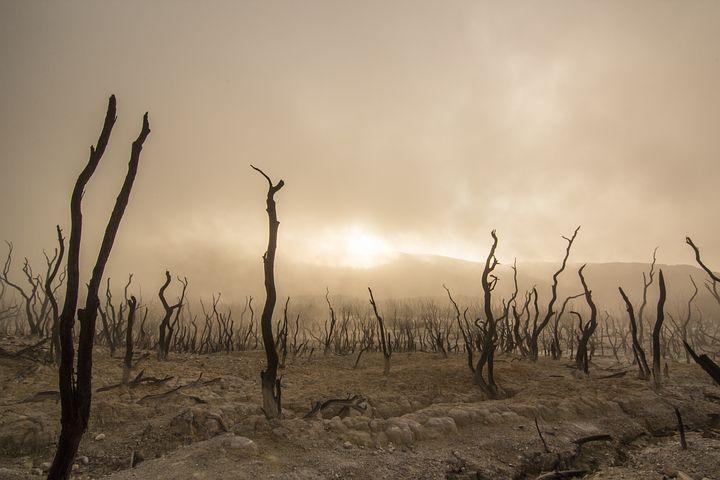 Rädda klimatet och mänskligheten – nödvändigt att avskaffa kapitalismen? Olika energialternativ diskuteras också.