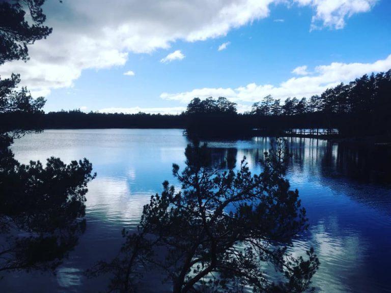 Vattenplundring i Sverige