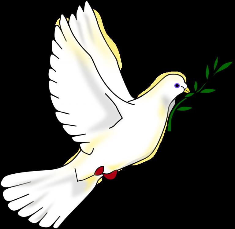 Svenska Fredskommittén fyller 70 år! Intressant och viktig möte idag. Kom!